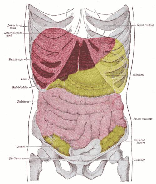 Limfológia, nyiroködéma kezelés