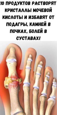 Alsó végtagok: a vénás rendszer anatómiája és jellemzői - Orvosok