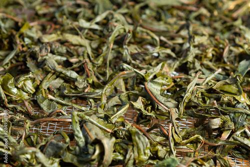 Koporye tea visszér visszérgyakorlatokra vonatkozó eljárások